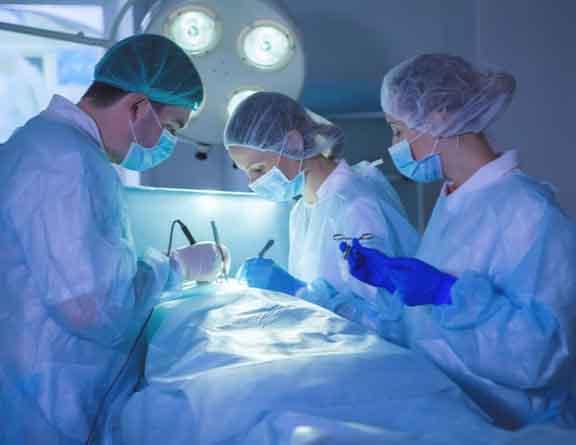 Doctors treating Gallstones in noida